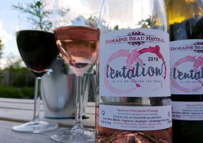 """""""Tentation"""" Rosé"""